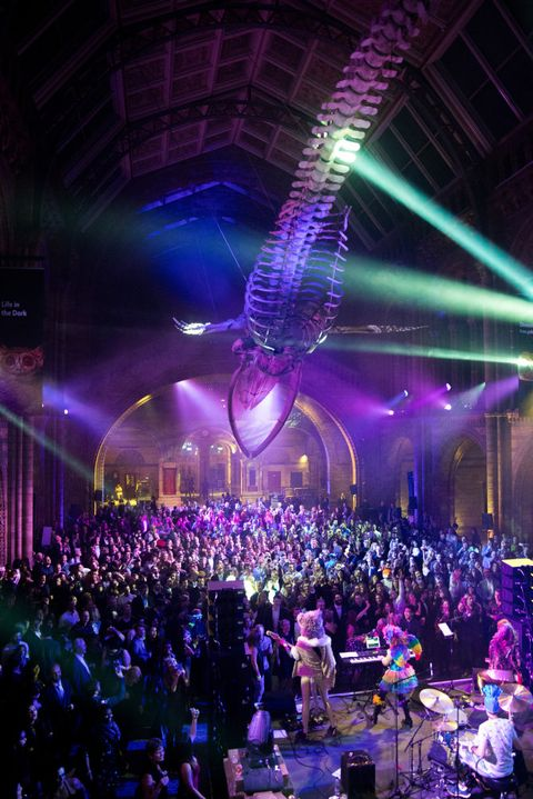 Purple, Entertainment, Performance, Stage, Light, Nightclub, Event, Crowd, Music venue, Lighting,