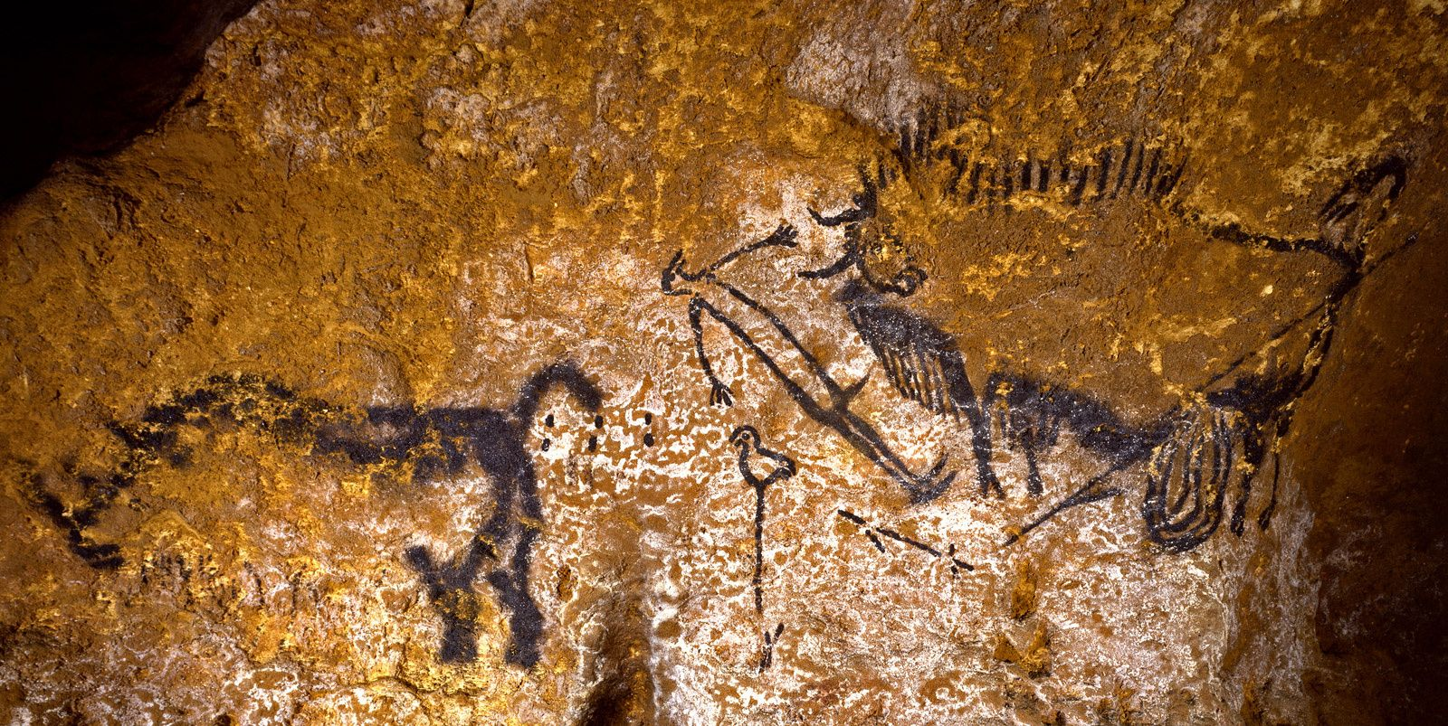 french cave painting