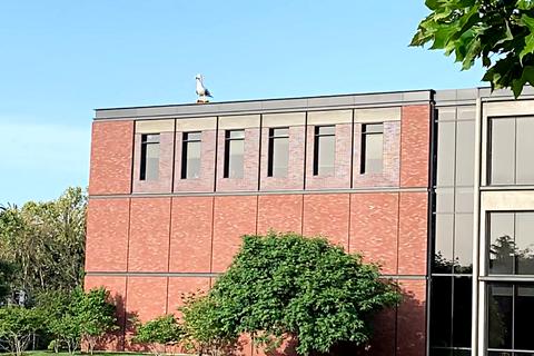 Pixar 皮克斯辦公室