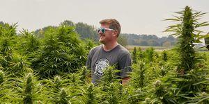 Floyd Landis standing in the center of his hemp field.