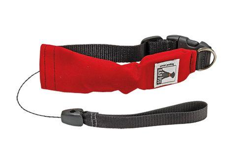 02-dog-collar.jpg