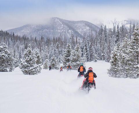 Snow, Winter, Geological phenomenon, Freezing, Tree, Snowmobile, Vehicle, Sky, Recreation, Winter sport,