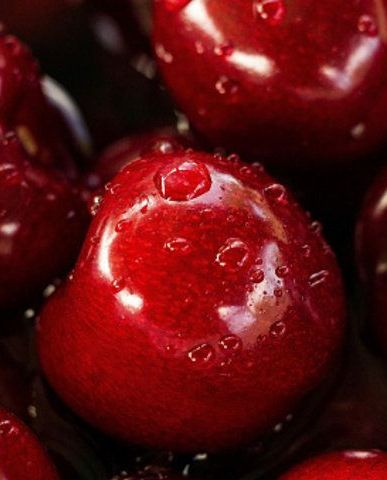 Natural foods, Food, Fruit, Cherry, Red, Plant, Cranberry, Local food, Superfood, Produce,