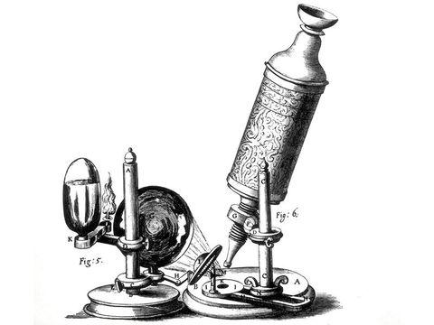 Resultado de imagen para microscopio compuesto (1592)