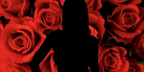 Red, Orange, Design, Pattern, Rose, Graphics, Plant, Graphic design, Flower, Illustration,