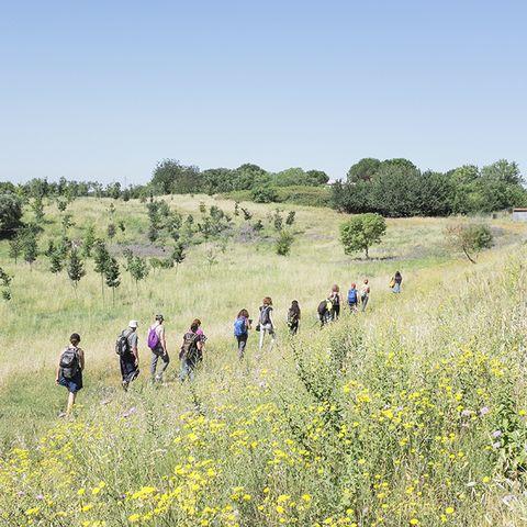 periferia di roma tratto dall'evento fotoleggendo walk