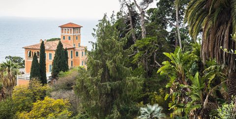 Vegetation, Tree, Botany, House, Building, Mansion, Architecture, Plant, Woody plant, Real estate,