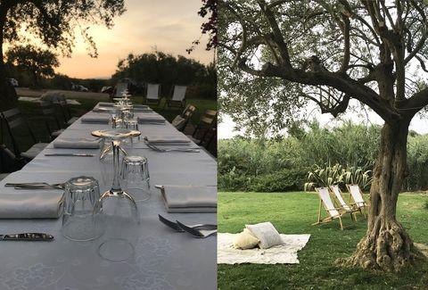 Sicilia alternativa con le experience di airbnb