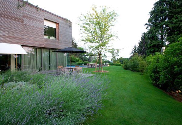 Giardini Moderni E Contemporanei : Progettare un giardino moderno con anna scaravella