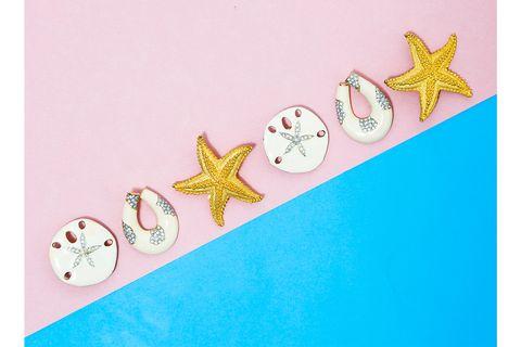 starfish clip earrings, sand dollar earrings, swarovski resin hoops