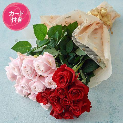 大山バラ園 山形 産直 バラの花束赤×ピンク・20本母の日カード付 11,000円
