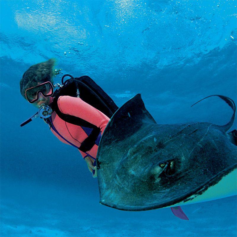 Scuba Diving At Womenshealthmag