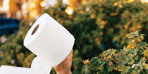 Stomach Problems: Woman with toilet roll