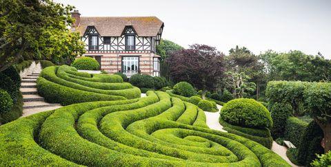 Shrub, Green, Garden, Grass, Botany, Maze, Hedge, Plant, Tree, Landscape,