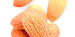 12-best-abs-foods.gif