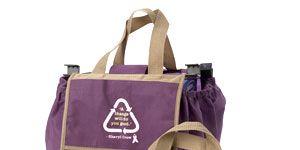 Sheryl Crow's Everywhere Bag