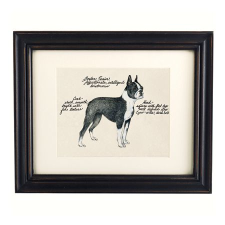Christmas gifts: dog print