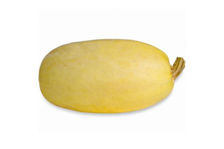 Different Types of Squash: spaghetti squash