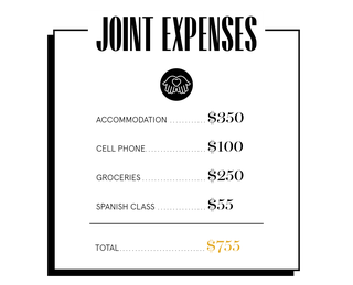 joint expenses