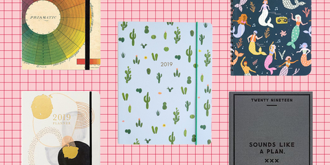 14 Best Planners 2019 Cute Agenda Calendars Under 50 To Get