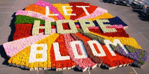 De woorden 'Let hope bloom' geschreven met onverkochte bloemen