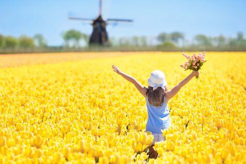 gelukkige jeugd in nederland