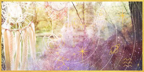 Purple, Text, Yellow, Branch, Line, Tree, Plant, Art, Pattern, Graphic design,