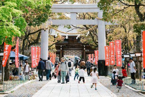 Shinto shrine, Temple, Torii, Shrine, Place of worship, Building, Architecture, Leisure, Tree, Temple,