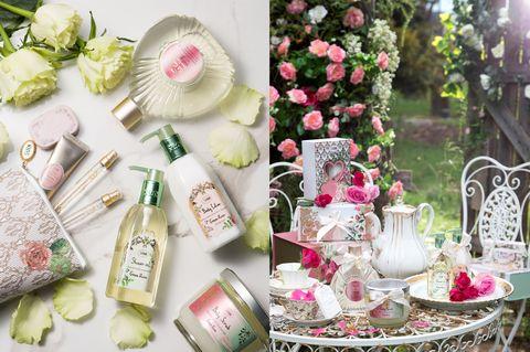 Pink, Party favor, Wedding favors, Centrepiece, Flower, Plant, Tableware, Flower Arranging, Party,