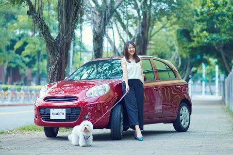 Land vehicle, Vehicle, Car, Motor vehicle, City car, Automotive design, Subcompact car, Hatchback, Tree, Mid-size car,