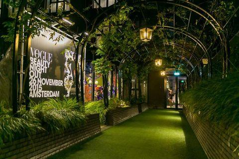Lighting, Walkway, Light fixture, Alley, Hedge, Security lighting,