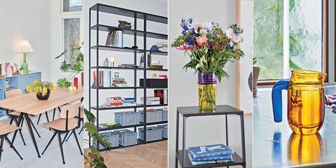 Shelf, Shelving, Houseplant, Furniture, Room, Interior design, Flowerpot, Plant, Building, Home,