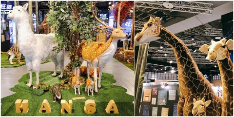 Giraffe, Giraffidae, Wildlife, Terrestrial animal, Organism, Adaptation, Fawn,
