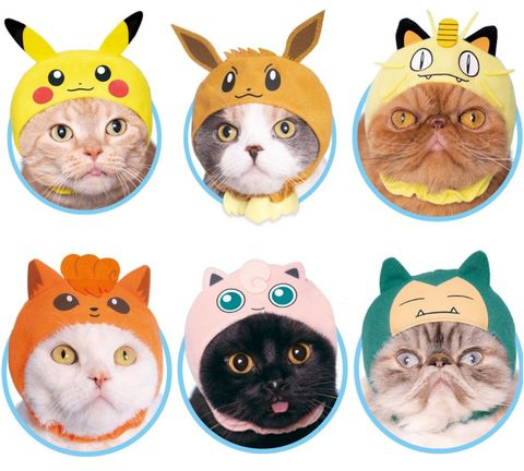 Cat, Whiskers, Cartoon, Snout, Felidae, Small to medium-sized cats, Cat supply, Animal figure, Clip art,