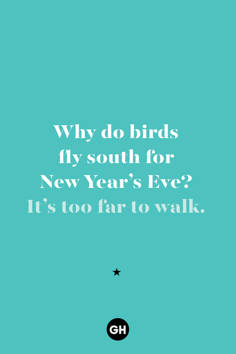 new years jokes   birds