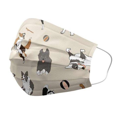 狗派終於等到專屬口罩了!「狗狗醫療口罩」牧羊犬、柯基、法鬥大集合,兩款都要收編