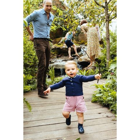 Photograph, People, Child, Toddler, Snapshot, Denim, Footwear, Standing, Tree, Jeans,