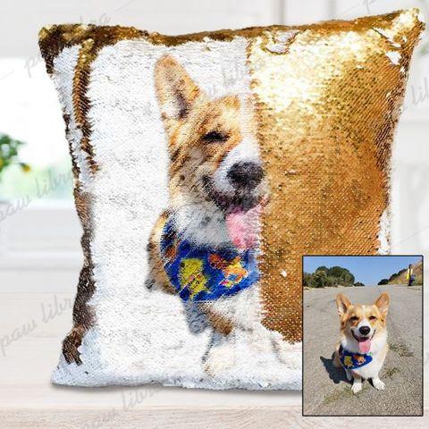 Dog, Mammal, Vertebrate, Canidae, Pembroke welsh corgi, Dog breed, Carnivore, Welsh Corgi, Cardigan welsh corgi, Cushion,