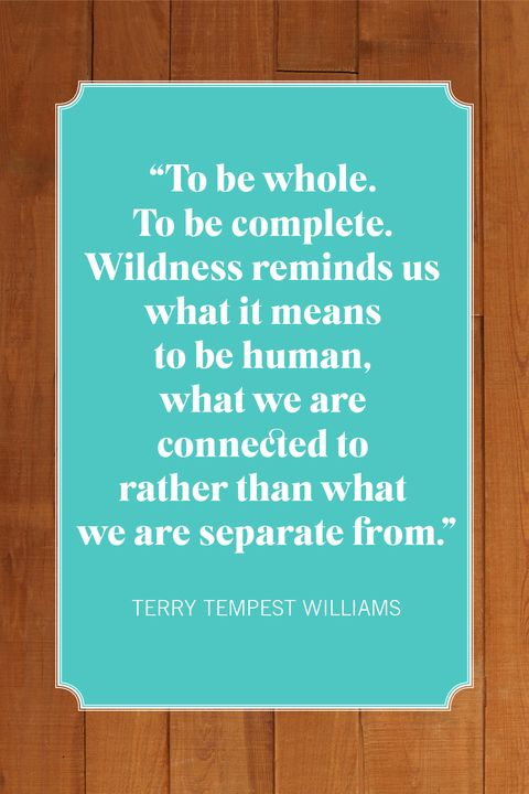 camping quotes terry tempest williams