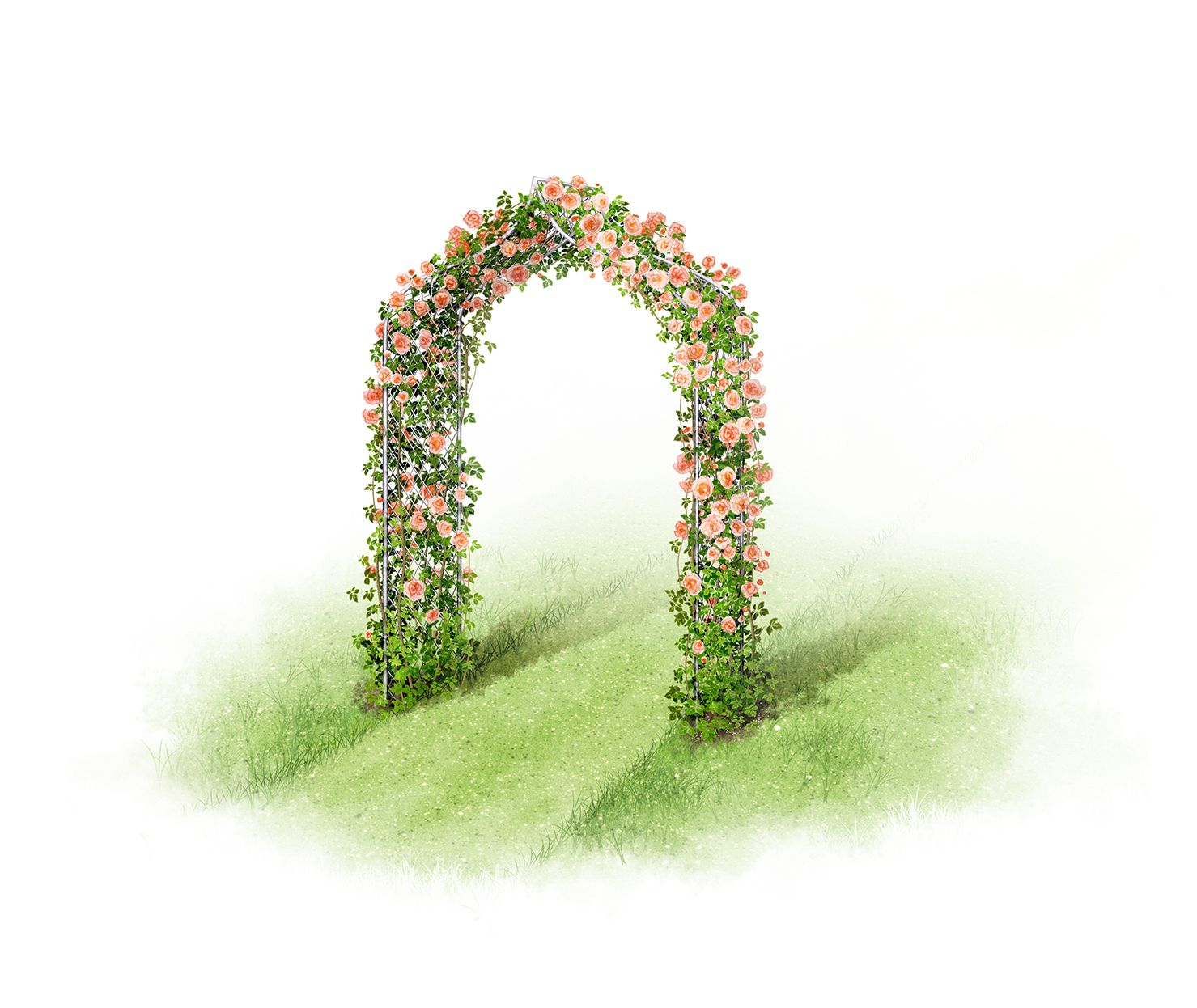 Garden arch illustrations - decorative metal arch