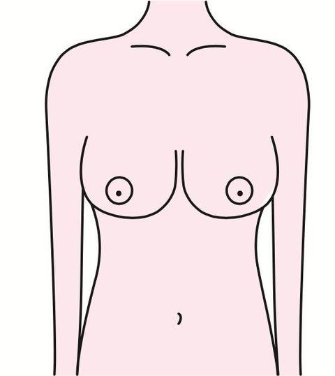Shoulder, Joint, Chest, Skin, Abdomen, Line art, Standing, Stomach, Neck, Line,