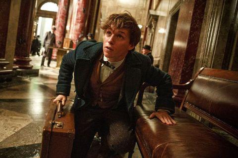 ニュート・スキャマンダーの名前は『ハリー・ポッターとアズカバンの囚人』で初登場