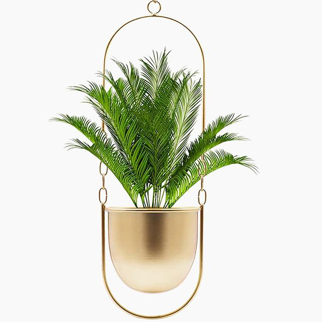 gifts plant lovers