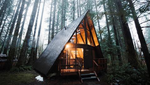 I viaggi più strani e belli nella natura si fanno nel bosco
