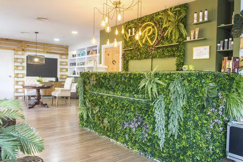 Coloración con plantas y salones
