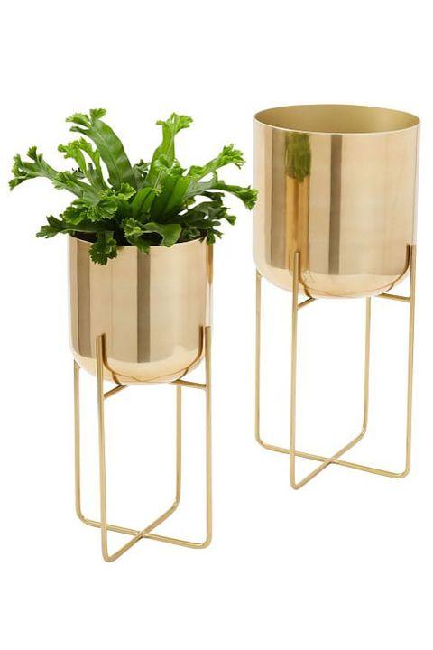 Flowerpot, Table, Plant, Vase, Furniture, Houseplant, Shelf, Metal, Beige, Glass,