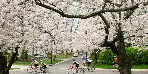 strava billion users cycling