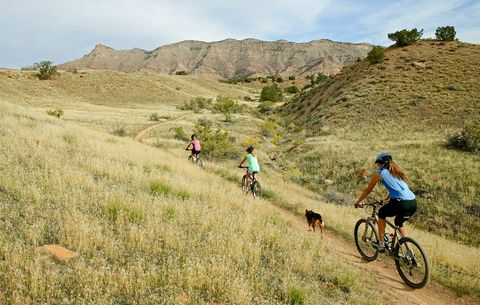 Explore 39,000 Miles of Colorado Trails With This Incredible Interactive Map