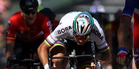 Peter Sagan Stage 4