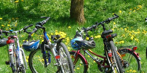 Maintaining a Good Bike-Life Balance.